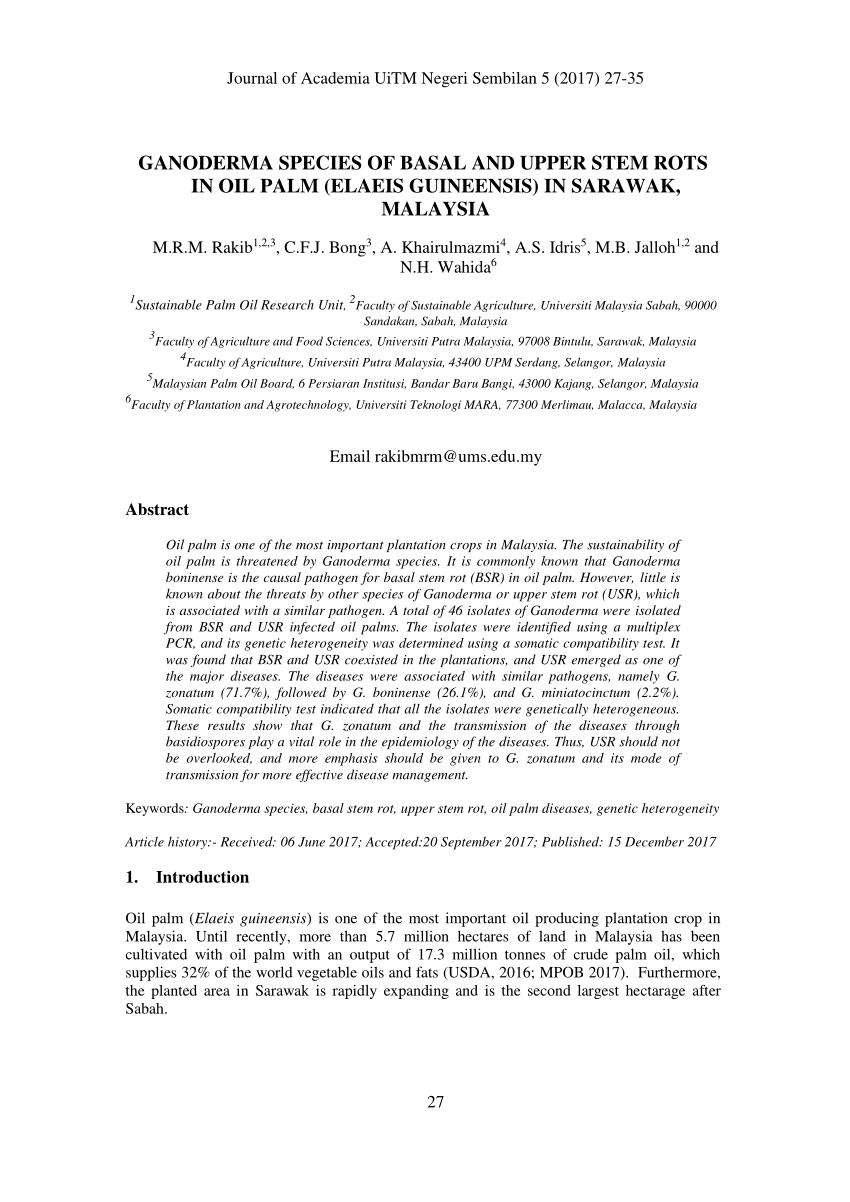 PDF Genetic And Morphological Diversity Of Ganoderma Species