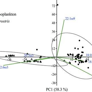 (PDF) Novel signature fatty acid profile of the giant