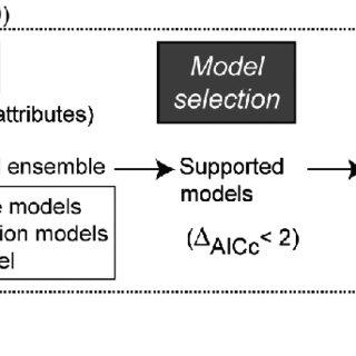 (PDF) Interactions between species attributes explain