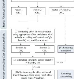 flow diagram of the process of standard stratification analysis in meta analysis  [ 850 x 1351 Pixel ]