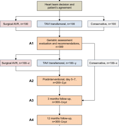 study flow diagram abbreviations avr aortic valve replacement tavi transcatheter aortic [ 850 x 1262 Pixel ]