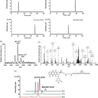 (PDF) Doxorubicin conjugated with a trastuzumab epitope