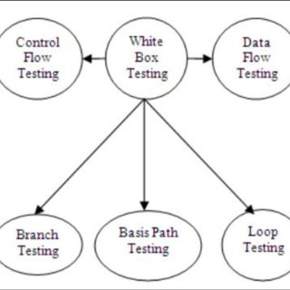 (PDF) Conventional Software Testing Using White Box Method