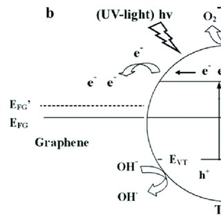 (PDF) Graphene Modified TiO2 Composite Photocatalysts