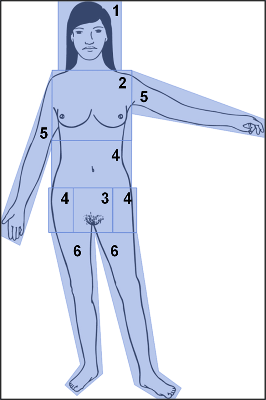 medium resolution of areas of interest were assigned to 1 head