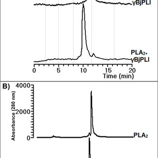 (PDF) Purification and characterization of the first γ