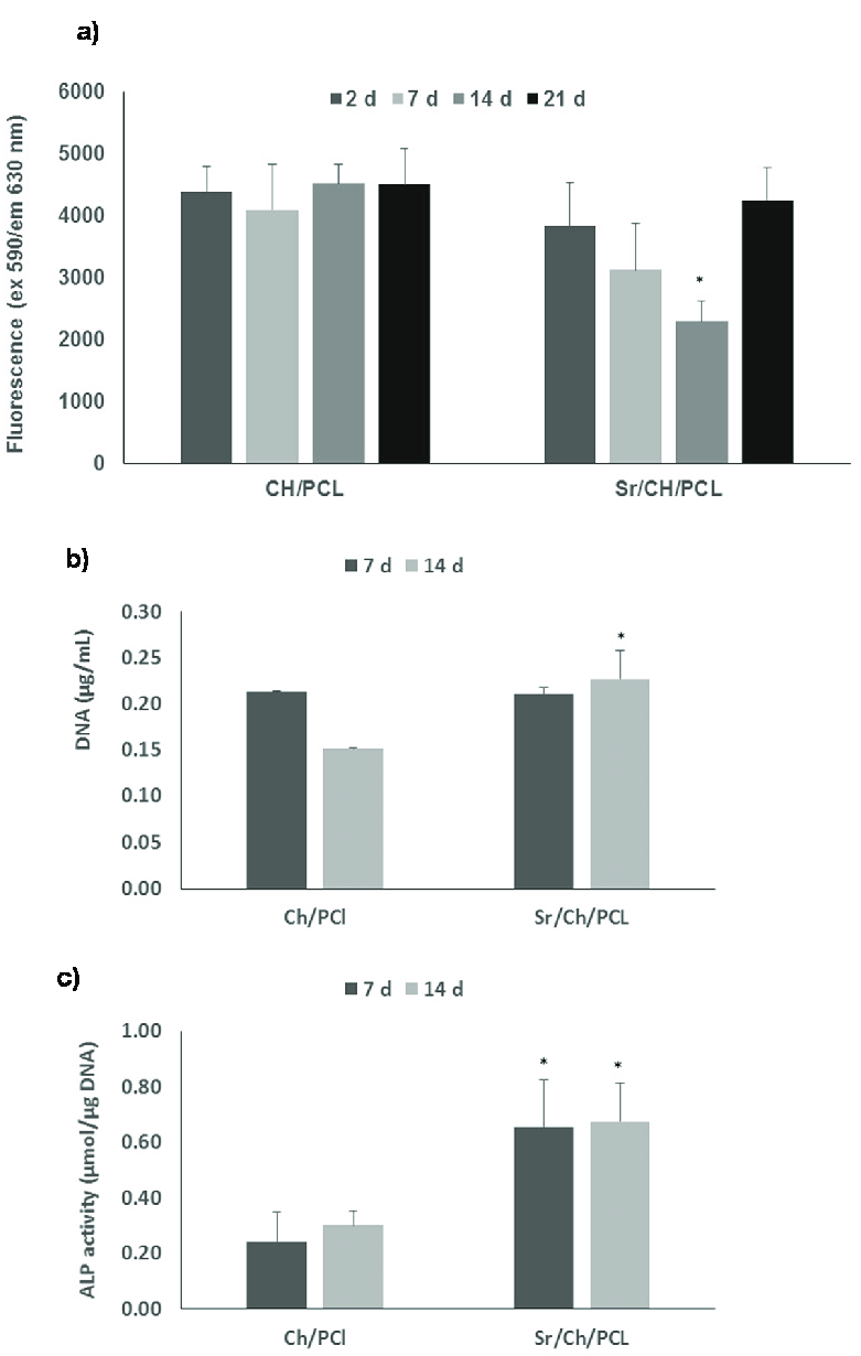 medium resolution of  a cell proliferation results obtained in ab assay of hbmscs culture directly on test materials over a period of 21 days b dna g ml in cell lysate