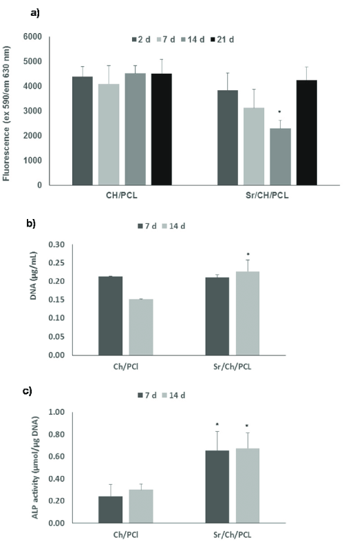 small resolution of  a cell proliferation results obtained in ab assay of hbmscs culture directly on test materials over a period of 21 days b dna g ml in cell lysate