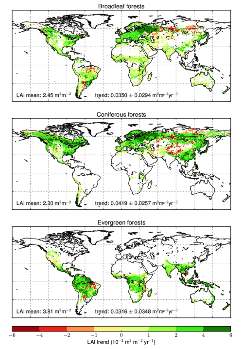small resolution of trend of lai mc for broadleaf coniferous and evergreen forests over the 1999