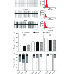 effects of lead and dsp 4 treatments on the electrical activity of stn gp and snr neurons a representative examples of spike trains and the  [ 850 x 958 Pixel ]