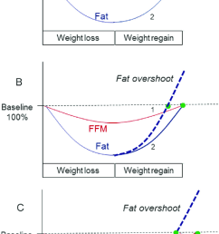 schematic diagrams depicting dynamics of body composition recovery with fat and ffm synchronization a or [ 685 x 1178 Pixel ]