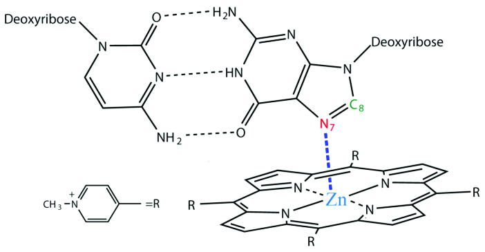Scheme 1. Schematic diagram for the central metal zinc(II
