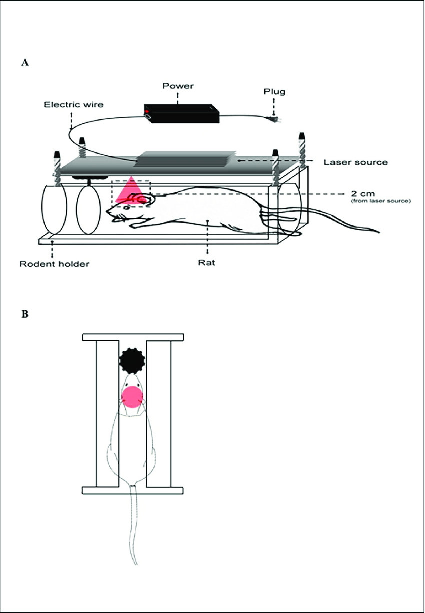 medium resolution of schematic diagram of the laser apparatus a side view and b