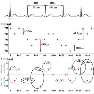 (PDF) Dynamical Landscape of Heart Rhythm in Long-Term