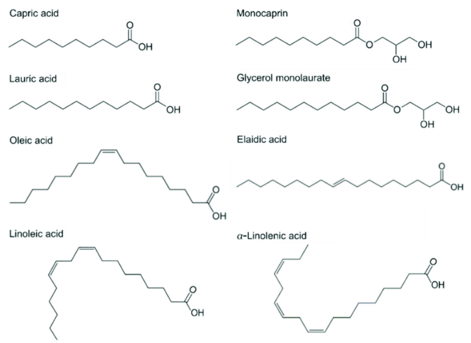 Chemical structures of fatty acids and monoglycerides