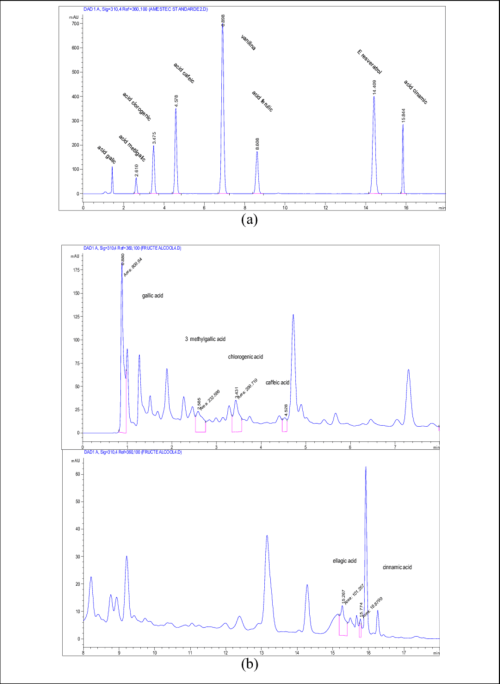 small resolution of typical hplc dad chromatograms a standard polyphenols and b phenolic