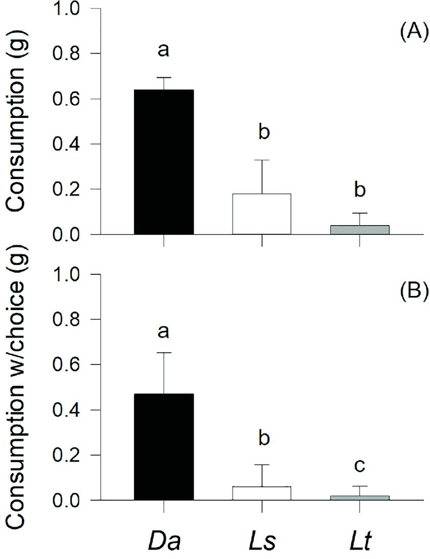 Mean (+S.D.) values of Diloma nigerrima consumption rates