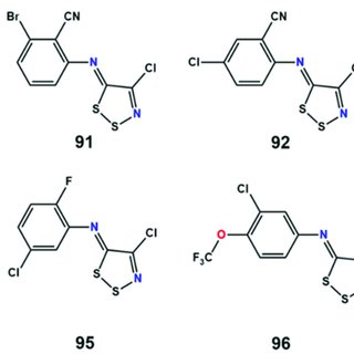 (A) The predicted model of the substrate binding site of