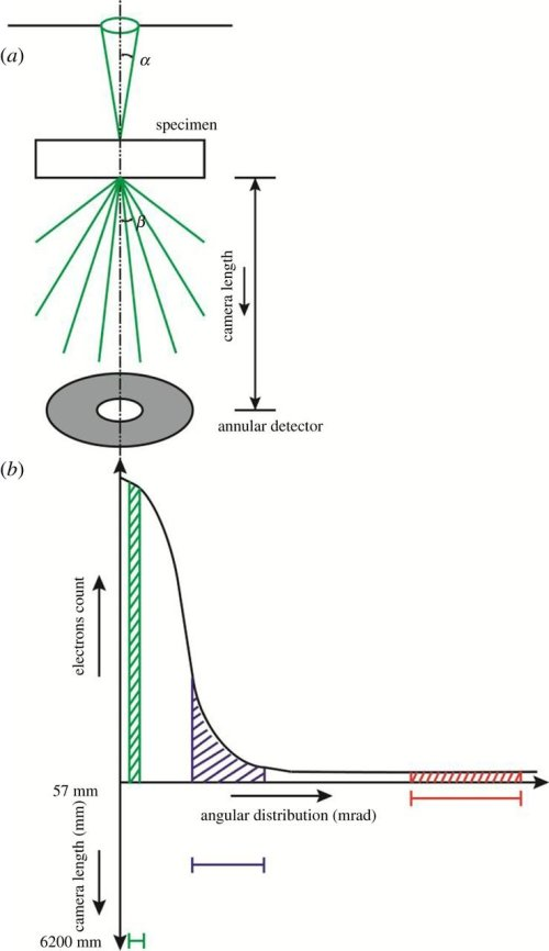 small resolution of schematic of a electron beam path in the adf stem mode with