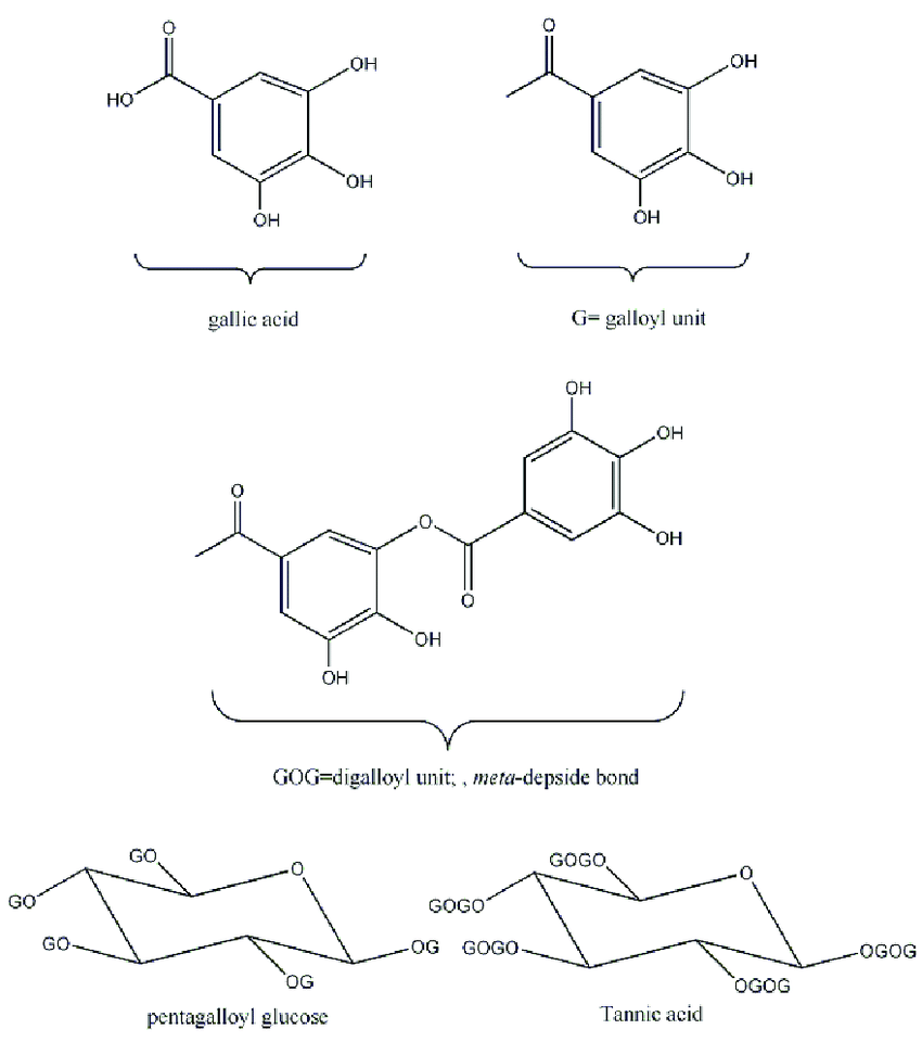 hight resolution of structure of gallic acid and pentagalloyl glucose and tannic acid structure of gallic acid and pentagalloyl