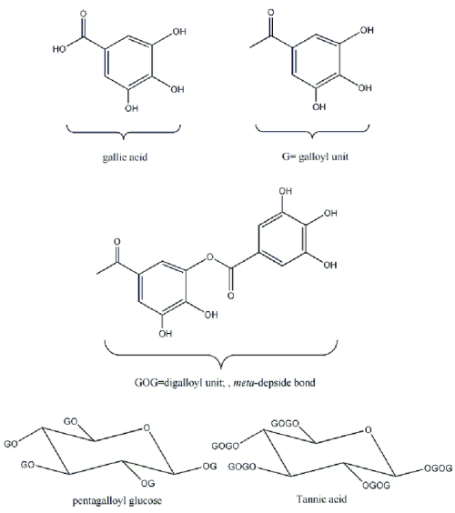 small resolution of structure of gallic acid and pentagalloyl glucose and tannic acid structure of gallic acid and pentagalloyl