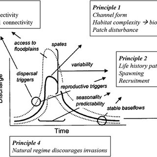 (PDF) River Hydrology, Flow Alteration, and Environmental Flow