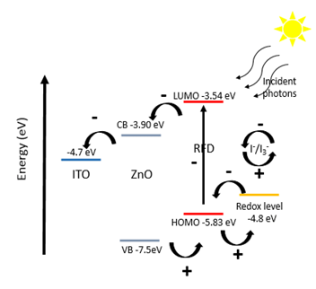 Energy level diagram and mechanism of photocurrent