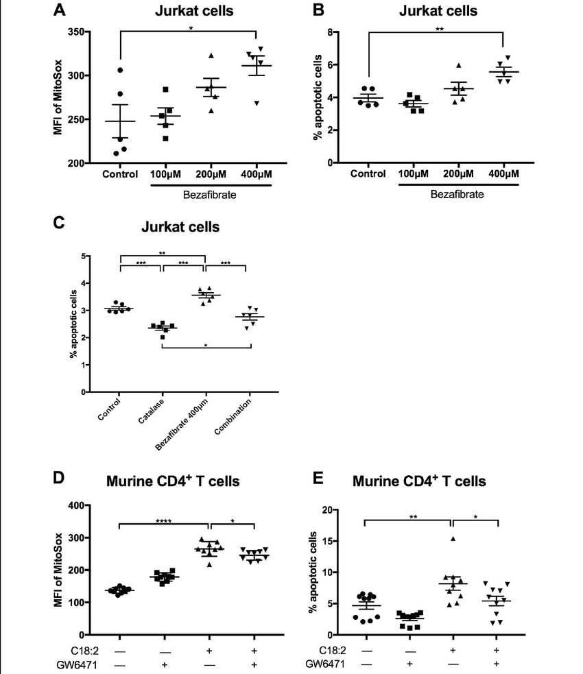 medium resolution of cpt upregulation induces apoptosis through reactive oxygen species a mitochondrial ros level was measured by