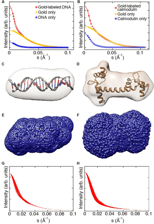 small resolution of saxs shape reconstruction trial gold label positions and computed download scientific diagram