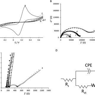 (PDF) Anti-Tau Antibodies Based Electrochemical Sensor for