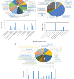 pie diagrams and bar diagrams for gene ontology analysis of differentially expressed proteins between breeding period [ 850 x 1115 Pixel ]