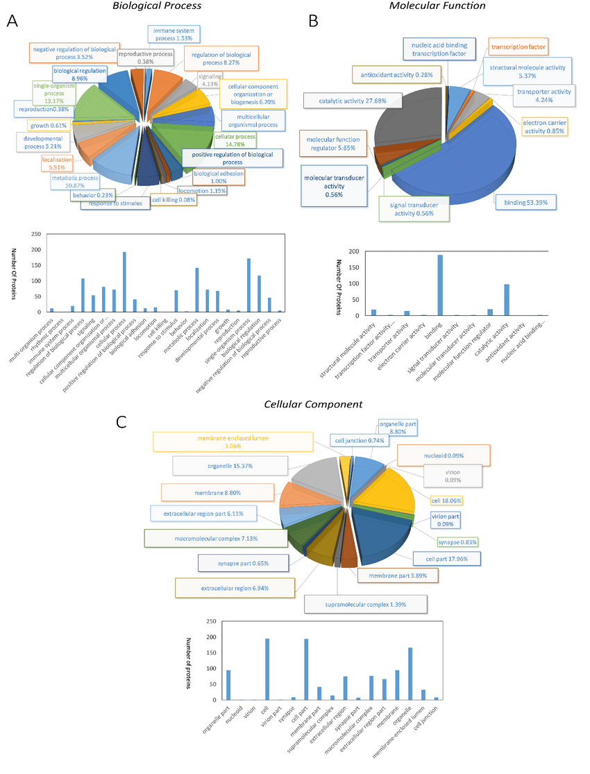 medium resolution of pie diagrams and bar diagrams for gene ontology analysis of differentially expressed proteins between breeding period