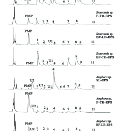 the hplc profiles of monosaccharides in different eps fraction samples from two diatoms samples were [ 850 x 1489 Pixel ]