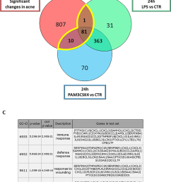 meta analysis using gene expression profiles from acne samples download scientific diagram [ 850 x 1021 Pixel ]