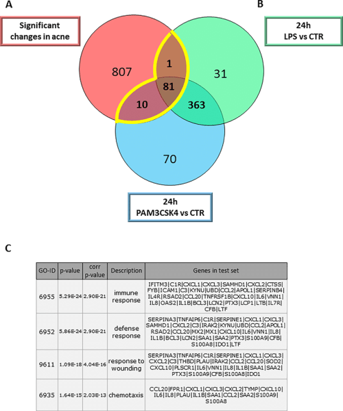 small resolution of meta analysis using gene expression profiles from acne samples download scientific diagram
