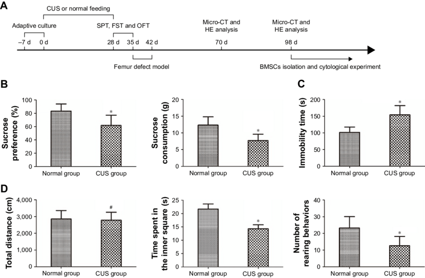 cUs caused depression-like behavior in rats. Notes: (A