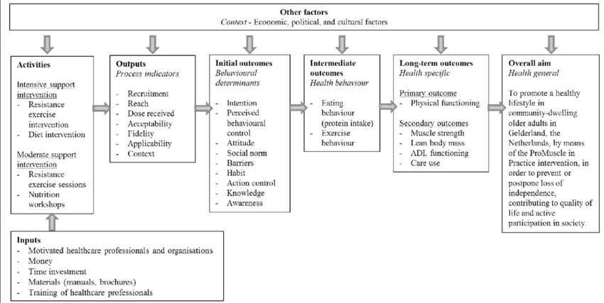 Logic model of change for the ProMuscle in Practice