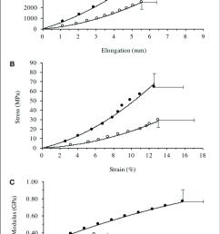 patella tendon a force elongation relationship b stress  [ 736 x 1216 Pixel ]