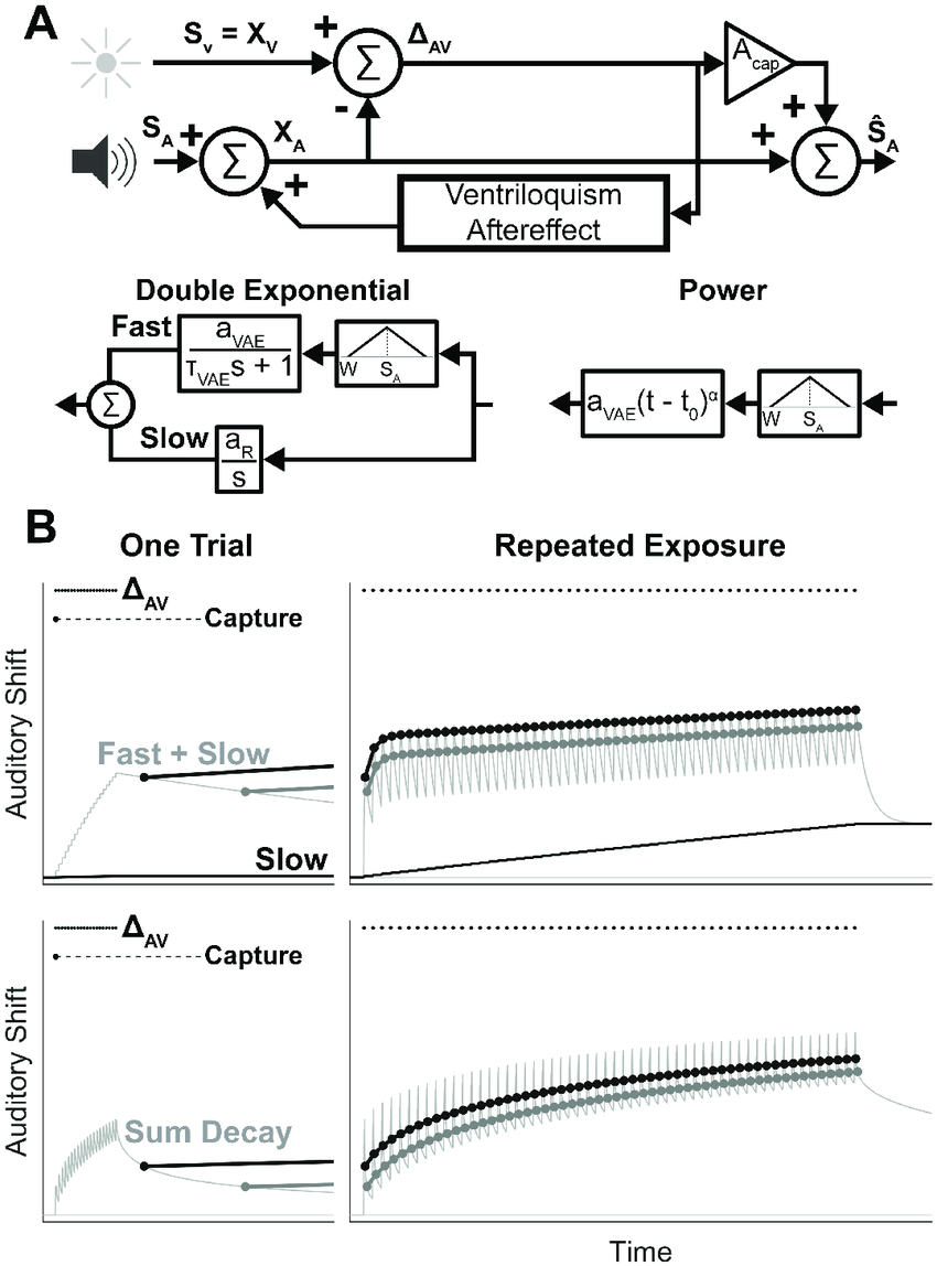 medium resolution of model of the ventriloquism aftereffect a block diagram summarizing the state space model