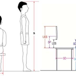 (PDF) The importance of ergonomics in schools