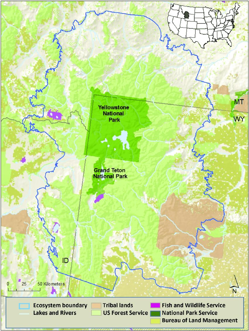 'yellowstone' fans know that getting branded on the dutton ranch is a big deal, so why do they brand some cowboys and not all? Map Of The Greater Yellowstone Ecosystem Depicting Land Allocation Download Scientific Diagram
