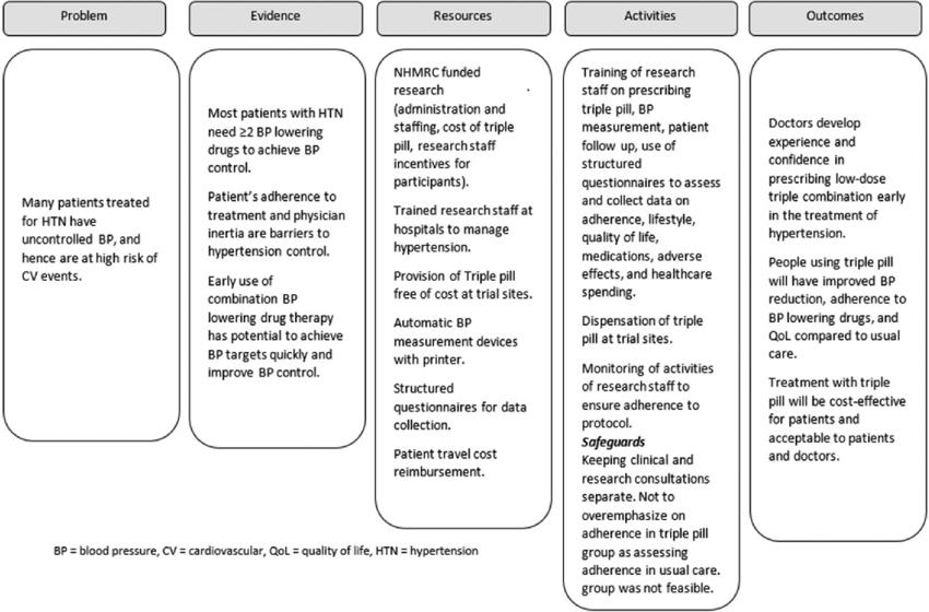 A logic model summarising the public health problem
