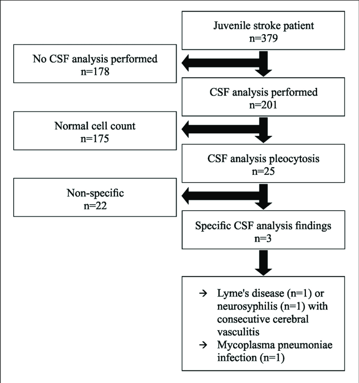 study flow chart csf