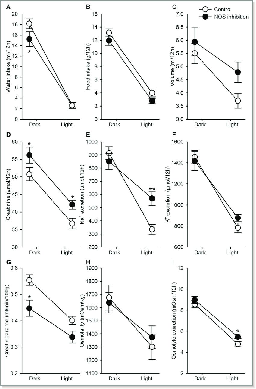 medium resolution of dark and light phase analysis of urine and water food intake rats
