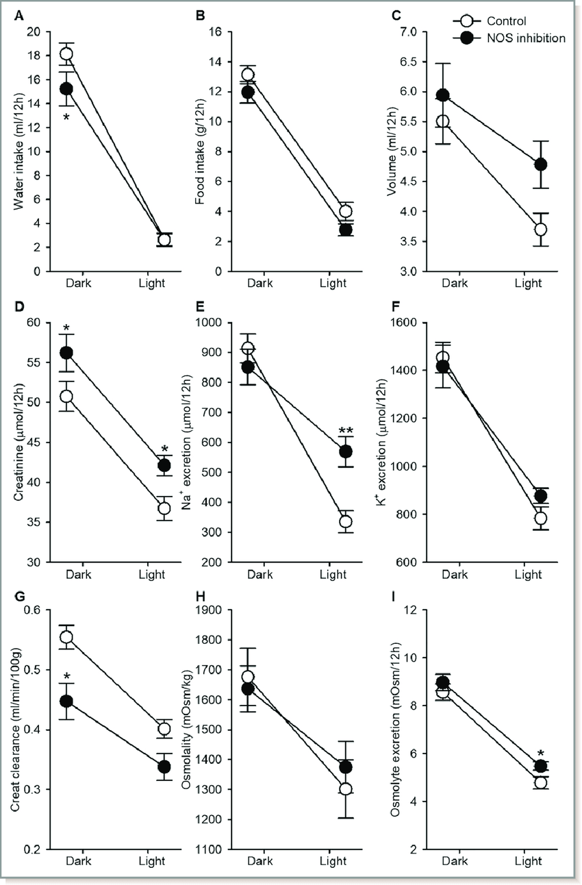 hight resolution of dark and light phase analysis of urine and water food intake rats