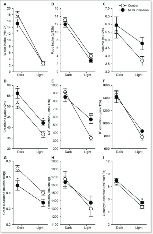 small resolution of dark and light phase analysis of urine and water food intake rats