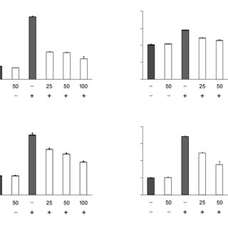 Rotenone cytotoxicity in SH-SY5Y cells. Cell viability was