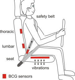 potential bcg sensor locations in a car seat note that the lumbar and download scientific diagram [ 850 x 935 Pixel ]