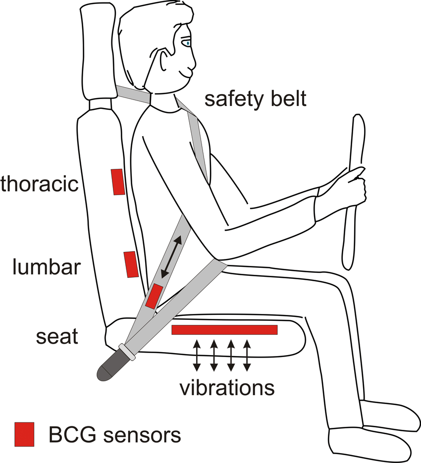 medium resolution of potential bcg sensor locations in a car seat note that the lumbar and download scientific diagram