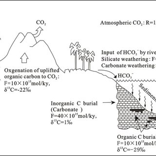 (PDF) Simulation of Carbon Isotope Excursion Events at the